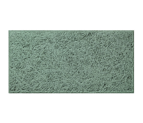 woods NCS S 1020-G by BAUX | Wall panels