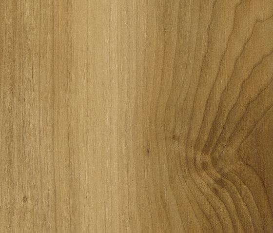 Life Oak de Caesar | Carrelage céramique