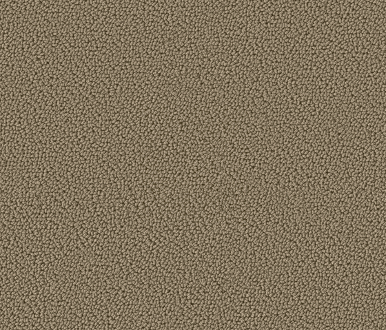 Accor 1032 Pearl by OBJECT CARPET | Rugs / Designer rugs