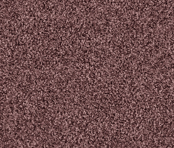 Glory 1517 Mauve by OBJECT CARPET | Rugs / Designer rugs