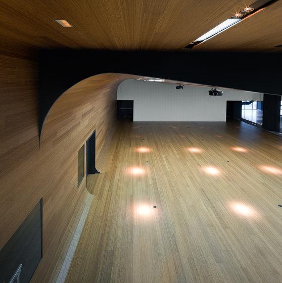 Parklex Floors HyTek | Bamboo Caramel by Parklex | Wood flooring