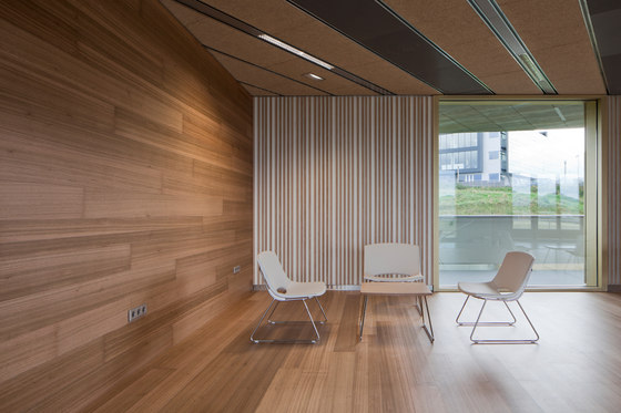 Parklex Walls And Ceilings Dry Internal Eucalyptus By