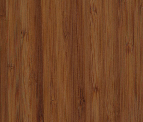 Parklex Skin Finish | Caramel Bamboo by Parklex | Wall veneers