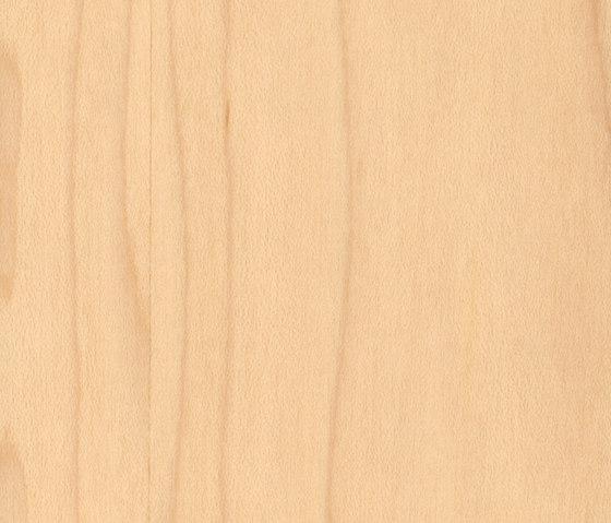 Parklex Skin Finish | Maple von Parklex | Furniere