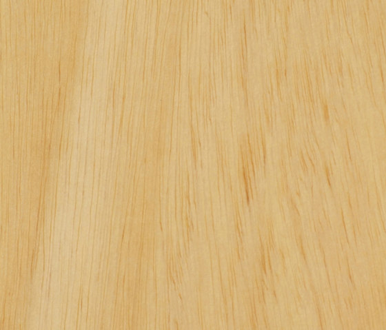 Parklex Skin Finish | Natural Ayous di Parklex | Piallacci pareti