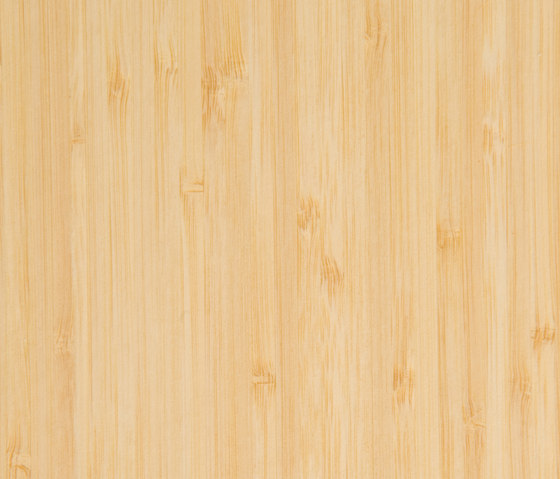 Parklex Skin Finish | Natural Bamboo von Parklex | Wand Furniere