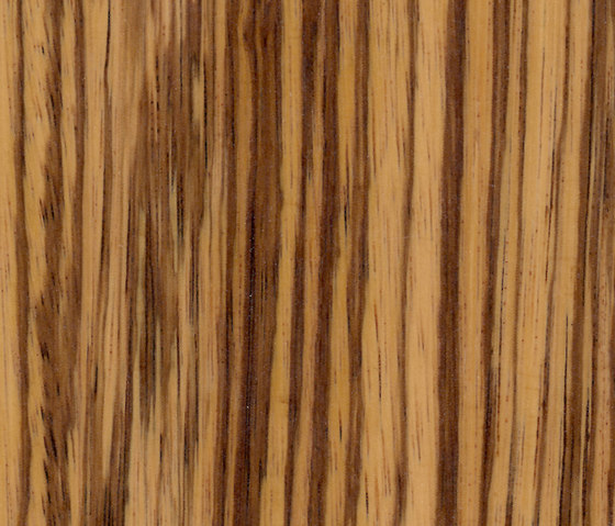 Parklex Skin Finish | Natural Zebrano von Parklex | Furniere