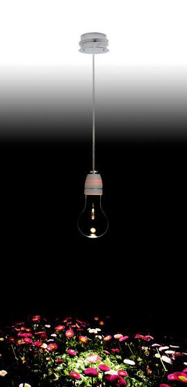 Incredible Bulb von benwirth licht | Allgemeinbeleuchtung