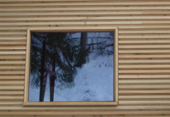 ISAM Vitrum by ISAM | Window types