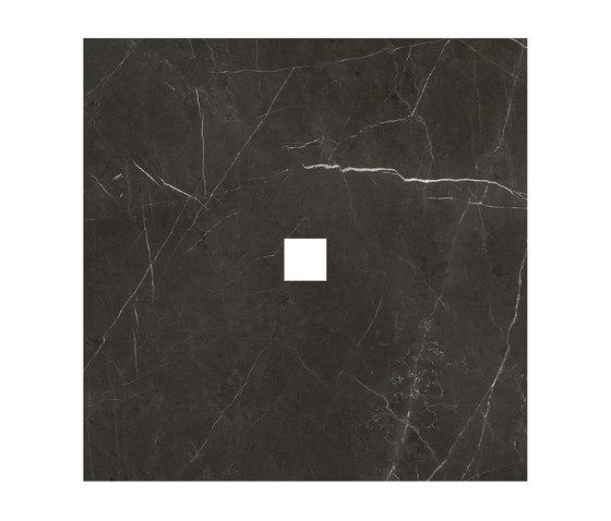 Anima Dekore Inserto | Graphite von Caesar | Keramik Fliesen