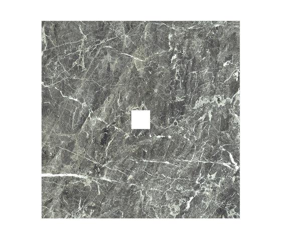Anima Dekore Inserto | Grey St.Laurent von Caesar | Keramik Fliesen