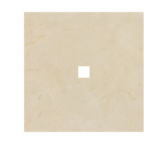 Anima Decors Inserto | Marfil by Caesar | Ceramic tiles
