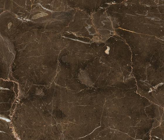 Anima Fondi Lucidato | Dark Emperador von Caesar | Keramik Fliesen