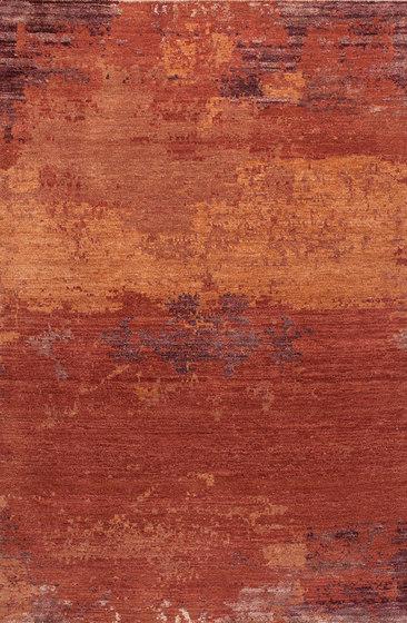 Grunge red robin by THIBAULT VAN RENNE   Rugs