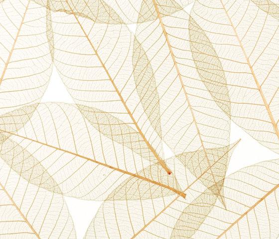 Charisma Glass Toffee Leaf de complexma | Vidrios decorativos