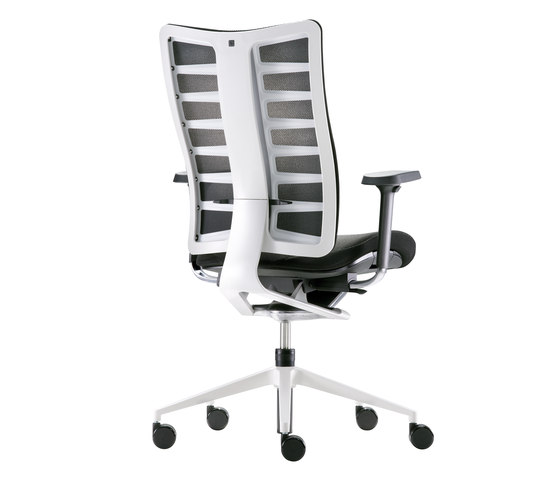 Sitagego task swivel chair by Sitag | Office chairs
