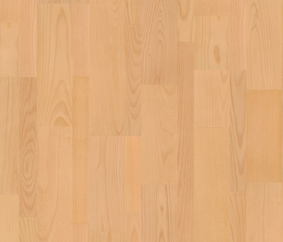 Belgium Laminate Flooring Suppliers: DOMESTIC EXTRA THERMOTREATED BEECH