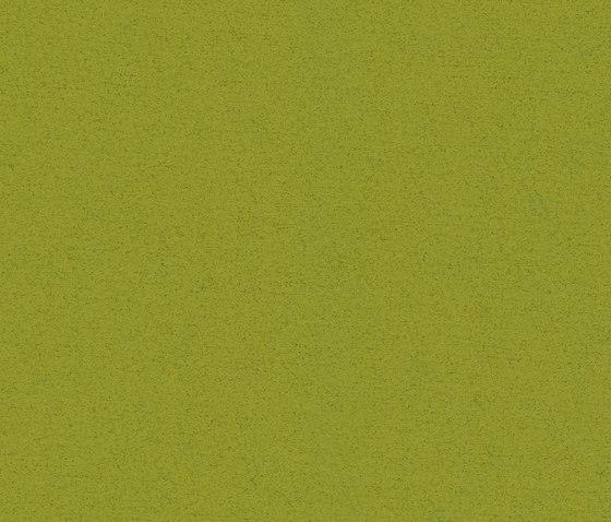 Blazer Bryanston by Camira Fabrics | Upholstery fabrics