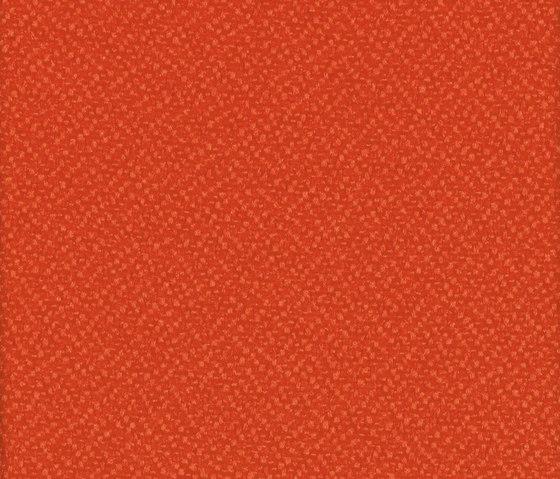 Lucia Tortuga di Camira Fabrics | Tessuti decorative