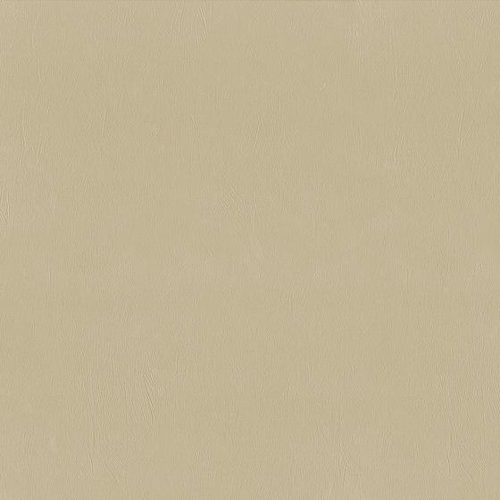 Pennelli gres corda de 14oraitaliana | Carrelage céramique