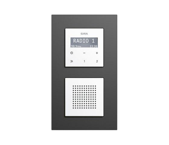 Esprit linoleum-plywood | RDS flush-mounted radio di Gira | Sistemi radio