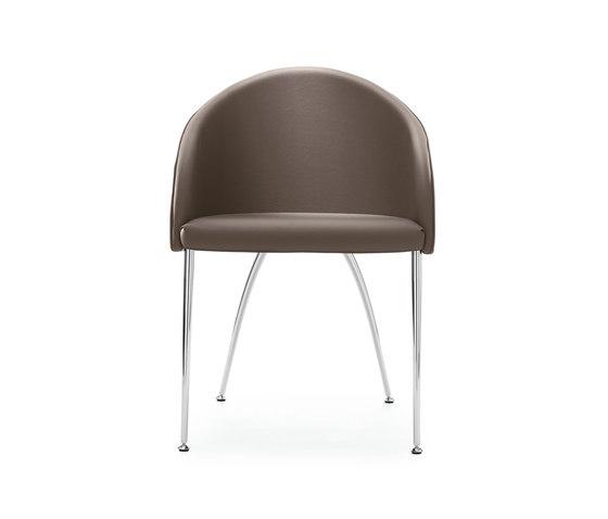 Kameo von Kastel   Stühle