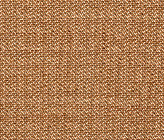 Topia Messing by rohi   Drapery fabrics