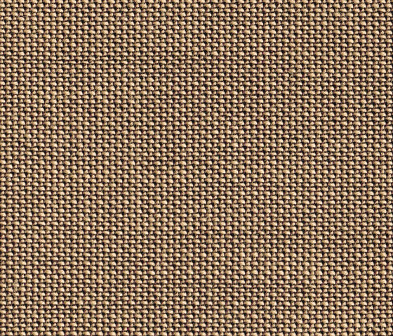 Topia Walnut by rohi | Drapery fabrics