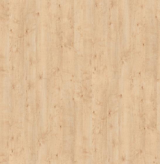 Masuren Birch Sand de Pfleiderer   Planchas de madera