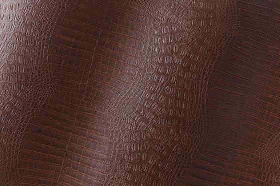 Cordoba Alligator mocca 012696 di AKV International | Finta pelle