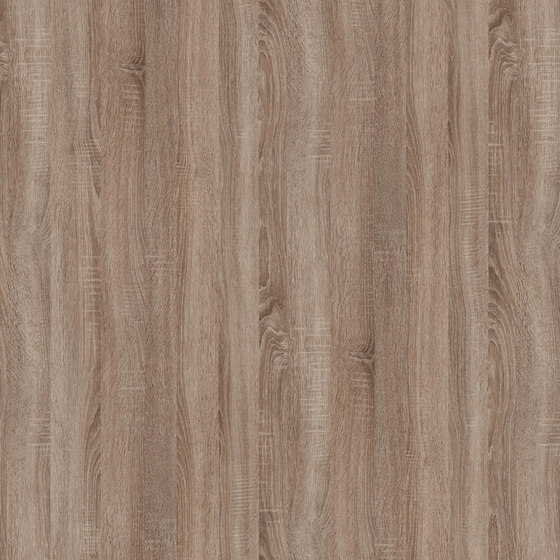 Truffle Sonoma Oak de Pfleiderer | Panneaux