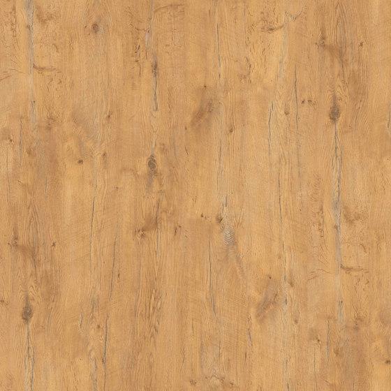 Pale Lancelot Oak di Pfleiderer | Pannelli legno