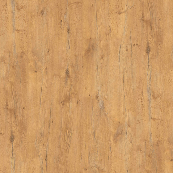 Pale Lancelot Oak de Pfleiderer | Wood panels