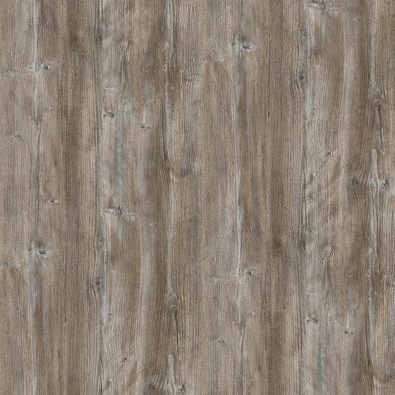 Ponderosa Pine de Pfleiderer | Planchas de madera