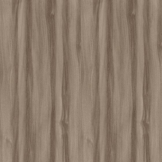 Truffle Baron Elm by Pfleiderer | Wood panels