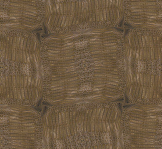 Crocodile by Inkiostro Bianco | Wall coverings / wallpapers