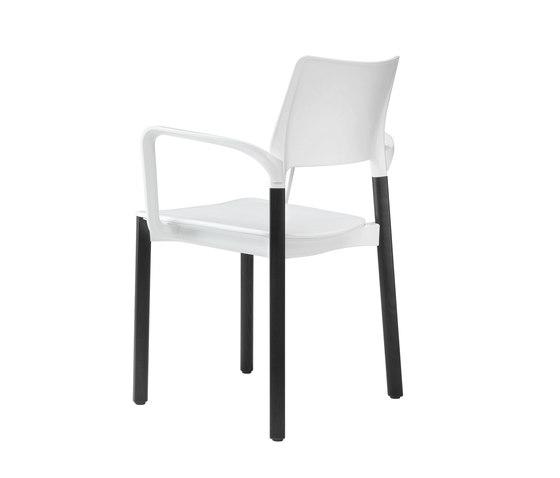 3600/4 Arn de Kusch+Co | Sillas