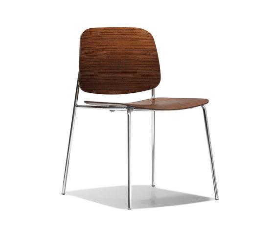 Sonar Wood von Bernhardt Design | Restaurantstühle