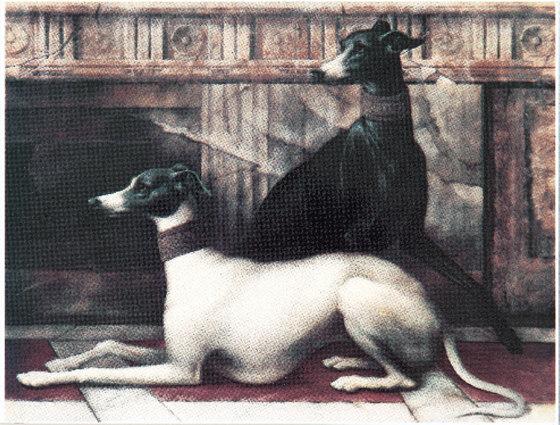 Grand Elegance noblesse B (levrieri) de Petracer's Ceramics | Carrelage céramique