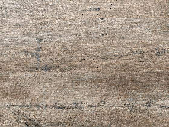 Evoque Crema Naturale di INALCO | Lastre ceramica