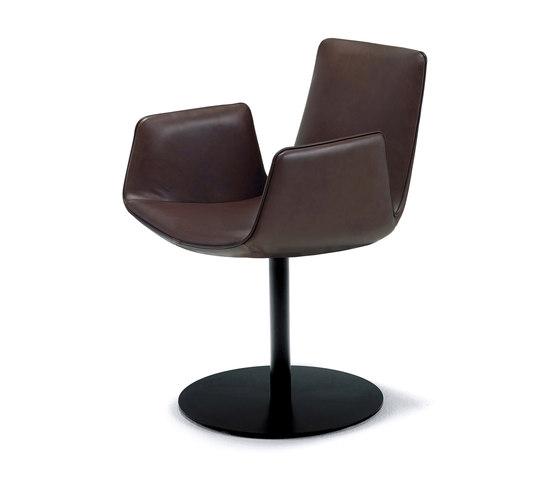 amelie armchair mit tellerfu st hle von freifrau sitzm belmanufaktur architonic. Black Bedroom Furniture Sets. Home Design Ideas
