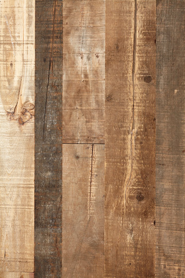 Uniquely Rio | Salvage Pine, Raw by Imondi | Wood panels