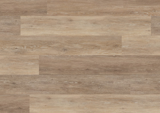 Floors@Home | 30 PW 1260 de Project Floors | Planchas