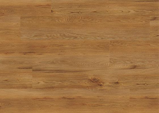 Floors@Home | 30 PW 3841 de Project Floors | Planchas