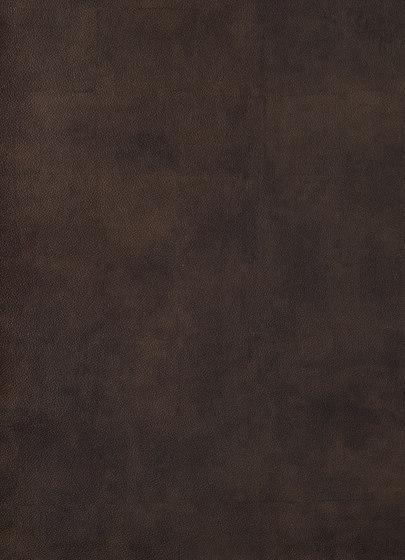 Primofiore FA33 de CLEAF   Planchas de madera