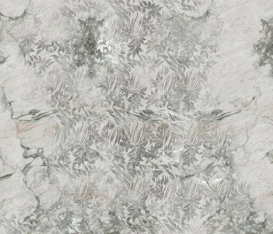 Stoneflower di Inkiostro Bianco | Carta parati / tappezzeria