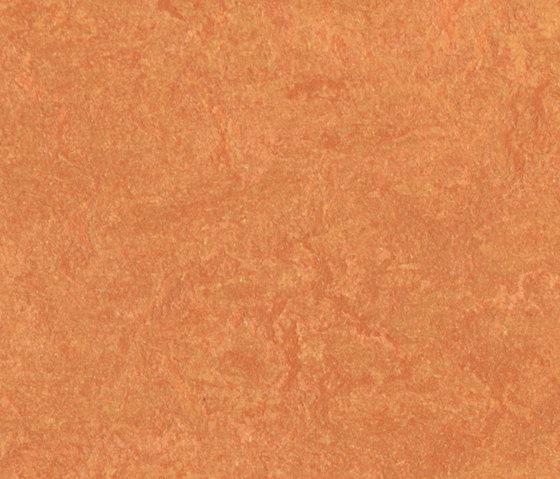 Marmoleum Fresco African desert by Forbo Flooring | Linoleum rolls
