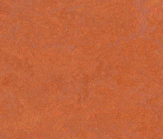 Marmoleum Fresco red copper di Forbo Flooring   Pavimentazione linoleum