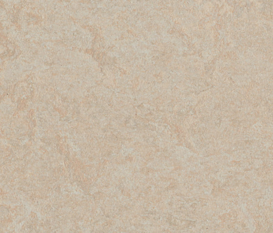 Marmoleum Fresco silver birch by Forbo Flooring | Linoleum rolls