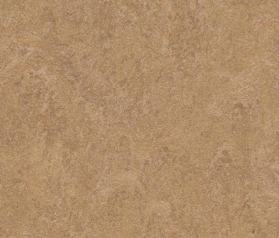 Marmoleum Fresco camel di Forbo Flooring | Pavimentazione linoleum
